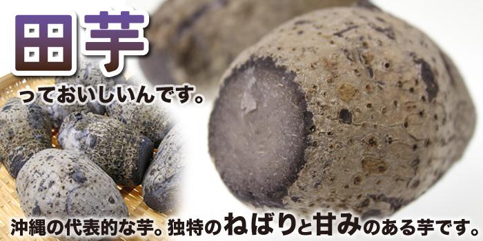 沖縄産田芋